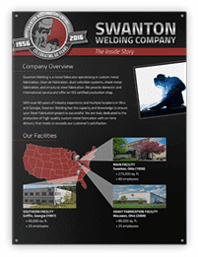 Cover Image forCompany Overview Infographic